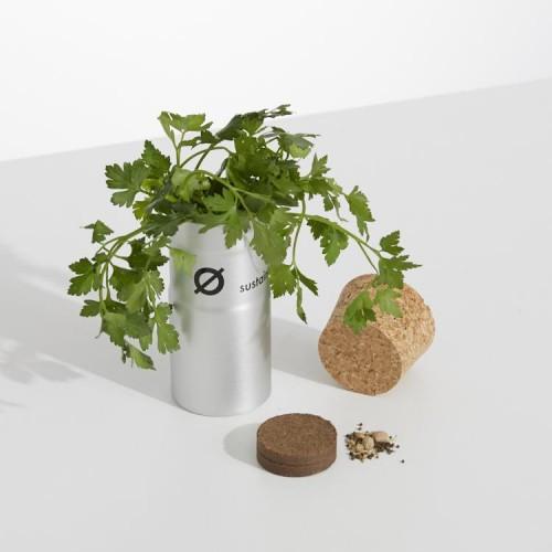 DesktopGarden-Herbs